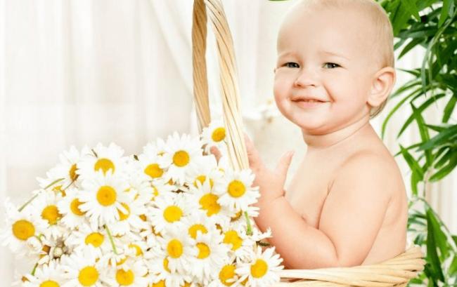 ромашка для новорожденных